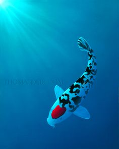 """""""Tancho-Sanshoku"""" 