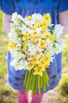 Gorgeous narcissi from Scilly Flowers