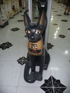 During my 18th visit of egypt I found this beautiful egyptian #cat ©Emmy DE http:// pinterest.com/emmydel/