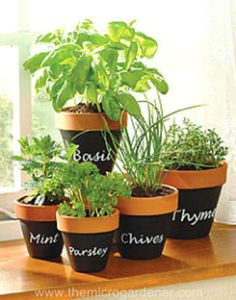 Indoor Herb Garden Ideas - Creative Juice | @Mindy Burton CREATIVE JUICE | @getcreativejuice.com