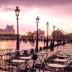 lueur rose le long du boulevard, Paris