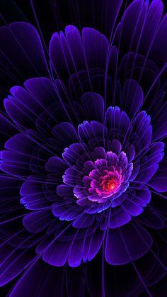 Purple Love, All Things Purple, Purple Rain, Shades Of Purple, Exotic Flowers, Purple Flowers, Flower Wallpaper, Wallpaper Backgrounds, Beautiful Flowers Wallpapers