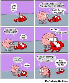 The Awkward Yeti comics Akward Yeti, The Awkward Yeti, Cute Comics, Funny Comics, Funny Cute, The Funny, Hilarious, Stupid Funny, Funny Cartoons