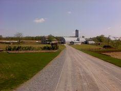 Christ & Rachel Miller farm - White Oak Road, Nickel Mines, PA - Southern Lancaster County - May, 2011
