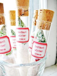 instant winter scene . miniature green bottlebrush trees and snow in a test tube . for vintage-inspired cheer.
