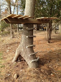 How To Make a Gypsy Tree House - super easy low profile tree house, J would love it. They have a zip line going off of this platform.
