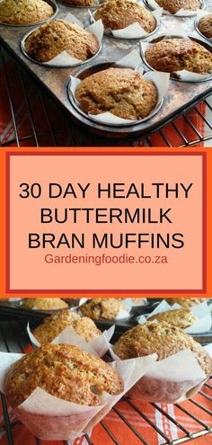 Convenient, easy, healthy and delicious, the mixture for these 30 Day Healthy Buttermilk Bran Muffins can be made ahead, stored in the refrigerator for up to 30 days and then used as needed. Bran Muffin Recipe With Buttermilk, Wheat Bran Muffin Recipe, Buttermilk Recipes, Diabetic Bran Muffin Recipe, Buttermilk Biscuits, Bread Recipes, Baking Recipes, Easy Recipes, Healthy Muffin Recipes