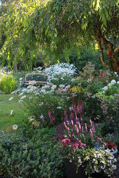 A garden evolves year after year – Backyard & Garden Design Small Cottage Garden Ideas, Small Garden Design, Garden Cottage, Small Gardens, Outdoor Gardens, Amazing Gardens, Beautiful Gardens, Exterior, Front Yard Landscaping