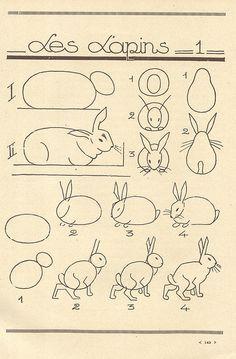 Kuinka piirtää pupu