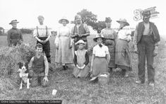 Dundee, Harvesting From The Francis Frith Collection. Vintage Pictures, Vintage Images, Agriculture, Farming, Family Images, Stylish Hats, Boater, Dundee, Photo Online