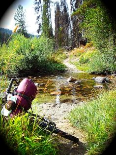 Bikepacking Kelley Creek, North Idaho Yes Please!!!!