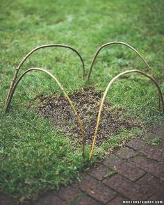 "Frequently found in English gardens, these bent twigs do the same job as a ""Keep Off the Grass"" sign, but they're far more attractive."