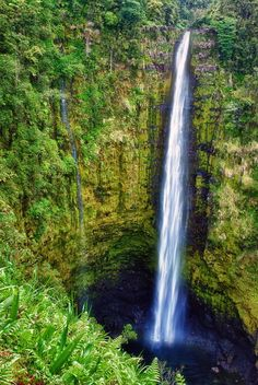 Reason #1 for going to Hawaii.... Photographing some amazing landscape.... Reason #2... I'm obsessed with waterfalls!