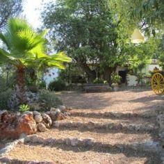 Prezzi case in Algarve Portogallo 2019: località e case in vendita Algarve, Plants, Flora, Plant, Planting