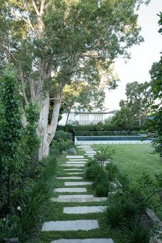 path to pool - surrounded by grass or more hardy ground cover like this? Backyard Pool Designs, Backyard Garden Design, Garden Pool, Backyard Landscaping, Australian Garden Design, Australian Native Garden, Back Gardens, Outdoor Gardens, Garden Paving