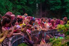 Such Bright Colours O_O Bright Colours, Hamilton, Events, Light Colors, Bright Colors, Vibrant Colors