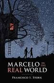 beautiful young adult book from the point of view of a young boy on the spectrum