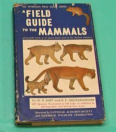 Peterson Field Guide Mammals Vintage HBDJ Audubon 1961 Sixth Printing