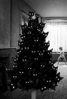 My kind of Christmas tree.
