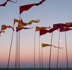 Swell Sculpture festival at Currumbin beach