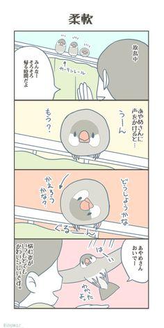 Japan, Bird, Comics, Fictional Characters, Animals, Twitter, Okinawa Japan, Animaux, Birds
