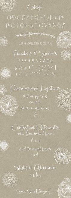 Caleigh Script Font with Bonus by Seven Seas Design Co. on Creative Market