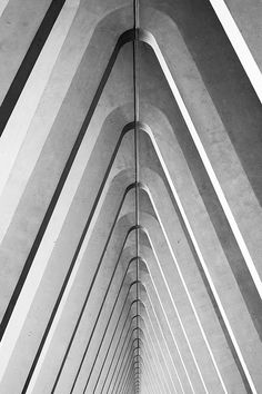 Guillemins by Graphikorama