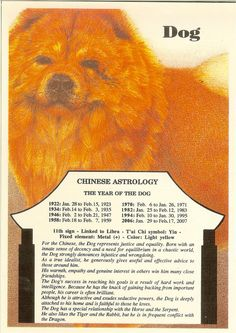 Zodiac Unlimited Chinese astrology postcard: Dog