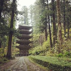 【zaginderikomei】さんのInstagramをピンしています。 《【山形】  #Nikon #Japan #japanstreet  #japan_of_insta #streetphotography #every #streetphoto #lovers_nippon #street_life #streets #darkside #japan🇯🇵 #streetphotographyincolors #Japan_travel #japan_daytime_view #photographer  #写真好きな人と繋がりたい #日常 #休日 #散歩 #羽黒山 #階段 #森 #森林》