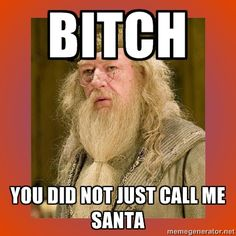 bitch you did not just call me santa