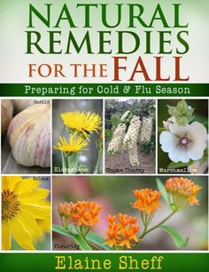 Amazing Natural Remedies to Prepare for Cold & Flu Season. http://www.amazingherbsandoils.com/amazing-natural-remedies-to-prepare-for-cold-flu-season/. This amazing natural remedies uses herbs, essential oils and nutrients to help you prepare for the cold and flu season – naturally!