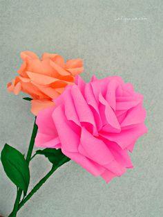Un tutorial da non perdere, completo di tutti i passaggi per realizzare con facilità delle rose giganti di carta crespa