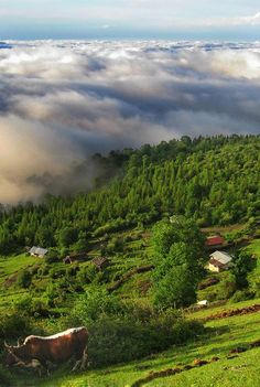 Asalem is a city in and the capital of Asalem District, in Talesh County, Gilan Province, Iran. #Asalem