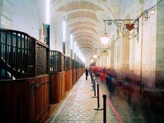 Neo Horseman®   Style Blog: Grand Stables at Versailles