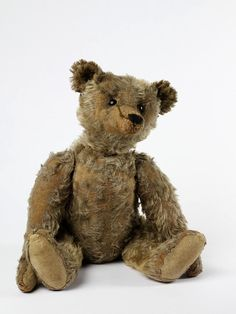 teddy | | V Search the Collections