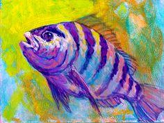 "Savlen Studios - Sheepshead fish 6"" x 8"" Original Painting ""Sheepshead Study"""