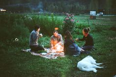 Is everyone staying cozy and warm this weekend? It seems like around this time every year, I start to dream of sunshine, bare feet, and outdoor dinner parties. which is why these lovely photos by Alana Paterson of a cold-weather picnic. Campfire Songs, Picnic Blanket, Outdoor Blanket, Outdoor Dinner Parties, Summer Memories, Farm Life, Summer Time, In This Moment, Adventure