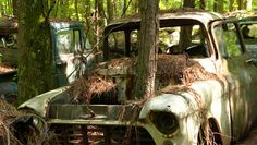 Rust and roots-- Old Car City USA in Georgia