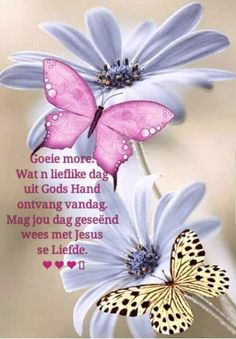 Good Morning Wishes, Good Morning Quotes, Hugs And Kisses Quotes, Evening Greetings, Afrikaanse Quotes, Goeie Nag, Goeie More, Christian Messages, Special Quotes