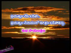 Beautiful Telugu Good Evening Quotes and Messages New Quotes, Hindi Quotes, Quotations, Love Quotes, Inspirational Quotes, Inspire Quotes, Good Evening Messages, Good Evening Wishes, Evening Quotes