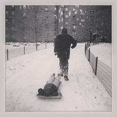 So much snow! #sledding #NYC #stytown #dad #littlebrother
