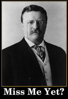 Teddy Roosevelt Meme