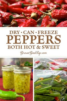 Looking for ways to preserve peppers? Learn several ways to preserve peppers so that you can enjoy the harvest bounty all year long! Fresh Fruits And Vegetables, Fresh Herbs, Canning Pressure Cooker, Pressure Cooking, Dried Peppers, Freeze Peppers, Fruit Preserves, Crumble Recipe, Canning Recipes