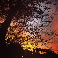 Amanecer en el Abasto - CapitalFederal - BsAs - Argentina ! Celestial, Sunset, Outdoor, Dawn, Argentina, Sunsets, Outdoors, Outdoor Living, Garden