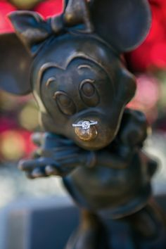 He asked her to marry him at Paradise Pier, and it was the perfect Disney proposal! This is literally the cutest Disney ring pic. Disney Engagement Pictures, Disney Engagement Rings, Disney Rings, Disney Jewelry, Wedding Pictures, Wedding Engagement, Disneyland Engagement Photos, Sleeping Beauty Wedding, Beauty And Beast Wedding