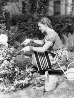 Photographic Print: Woman Gardening by H. Armstrong Roberts : 24x18in