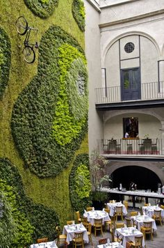 Green Wall - Mexico City, an amazing living wall. I'm obsessed with the use of vertical spaces. Comes with living in traditional Cornish houses I guess, you have to use every inch. Green Architecture, Landscape Architecture, Geometry Architecture, Architecture Design, Innovative Architecture, Landscape Sketch, Creative Landscape, Landscape Designs, Graffiti En Mousse