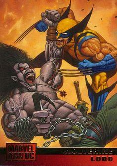 wolverine vs lobo   Wolverine Vs Lobo - Marvel Vs Dc Comic Crossover Wiki