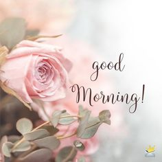 good morning & good morning quotes ` good morning ` good morning quotes inspirational ` good morning quotes for him ` good morning wishes ` good morning beautiful ` good morning images ` good morning quotes in hindi Cute Good Morning Texts, Good Morning Tuesday, Good Morning Beautiful Quotes, Good Morning Handsome, Good Morning Messages, Good Morning Greetings, Good Morning Wishes, Have A Beautiful Day, Morning Quotes Images