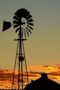 Morning at the Farm - Dakota Light Photography by Nadene